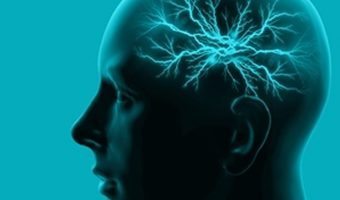 Memory Insight and Those With Brain Damage