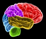 Traumatic brain injury recovery via petri dish