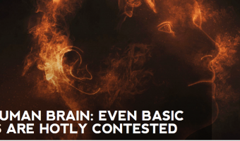 THE HUMAN BRAIN: EVEN BASIC FACTS ARE HOTLY CONTESTED